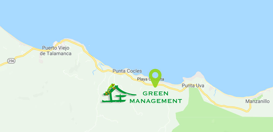 How to Get to Green Management